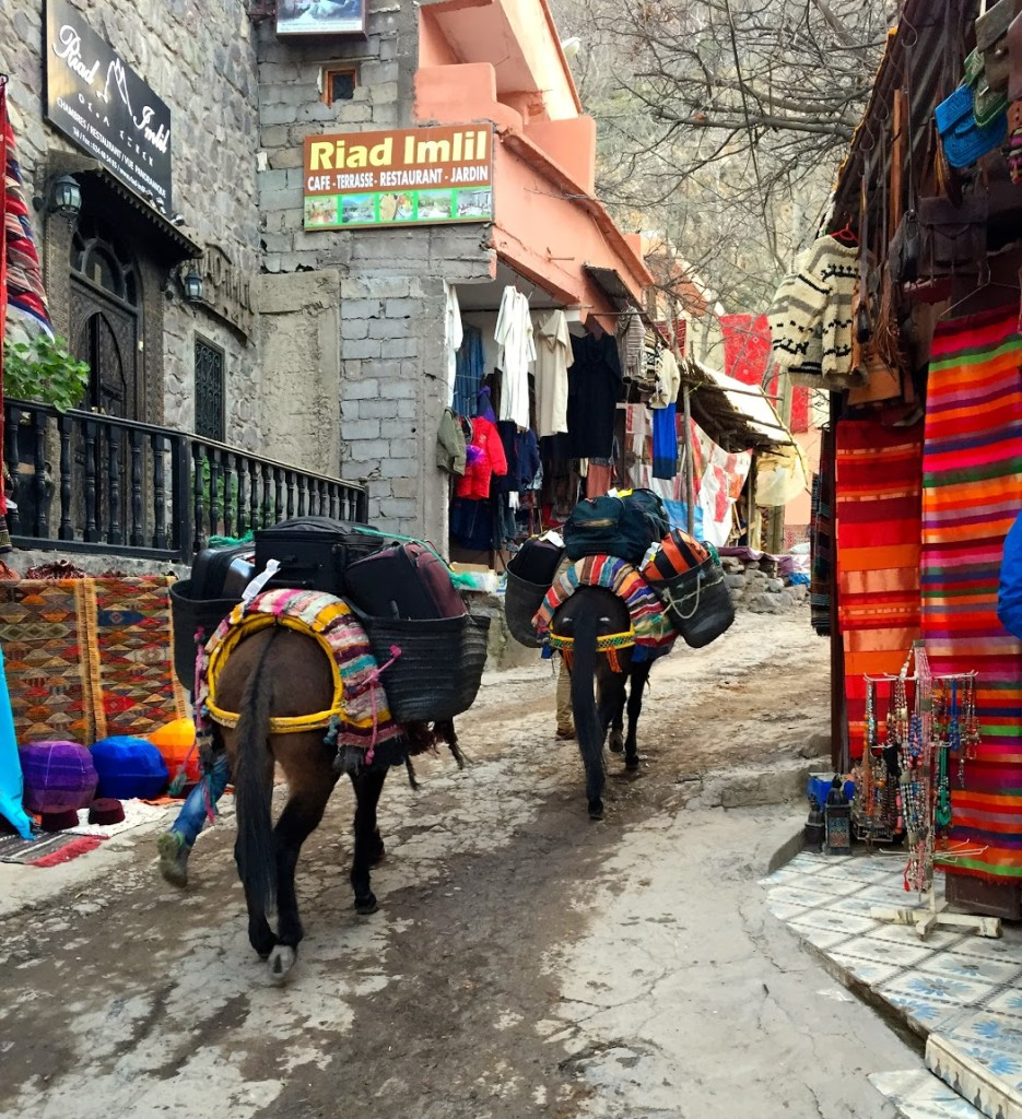 Donkeys carried our bags up through the village.